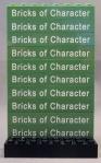 Bricks of Character Bricks for Iain Heath (1x8 sand green with white text)